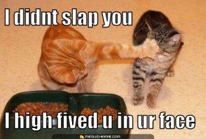 i-didnt-slap-you-i-high-fived-u-in-ur-face
